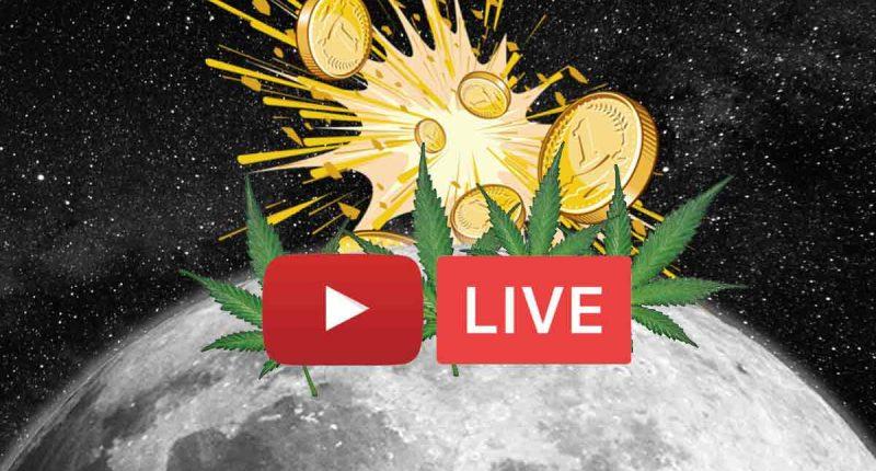 marijuana stocks livestream