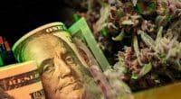 Cannabis Stocks Before August 2021