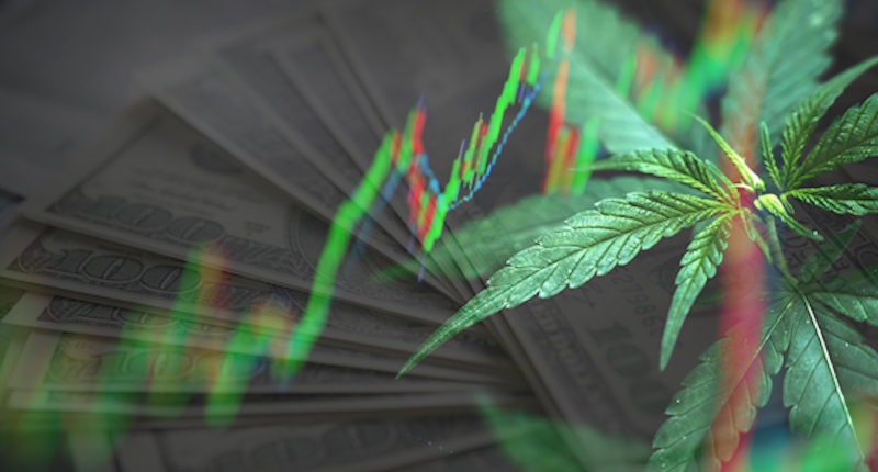 Cannabis Stocks To Buy In August 2021
