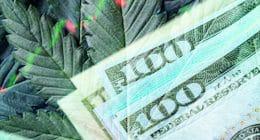 Looking For Top Marijuana Stocks In July