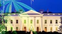 Marijuana Reform And Legalization 2021