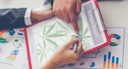 Marijuana Stocks On The Radar 2021