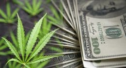 Pot Stock Rally In July