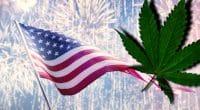 Top Marijuana Stocks For 4th of July