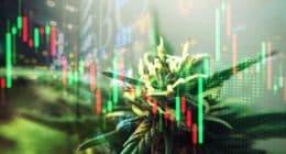 Top Marijuana Stocks To Start July