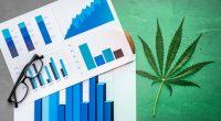 Best Cannabis Stocks 2021