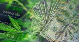 Best Cannabis Stocks In August 2021