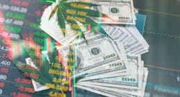 Best Cannabis Stocks to Watch In August 2021