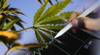 Best Marijuana Stocks To Watch Today (1)