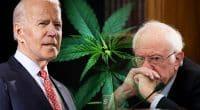 Biden And Sanders On US Cannabis Legalization