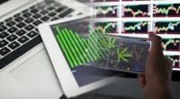 Cannabis Stocks In August To Watch