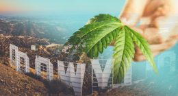 Hollywood And Cannabis