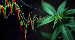 Watching Marijuana Stocks In September