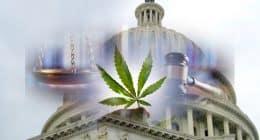 Marijuana Decriminalization and Reform